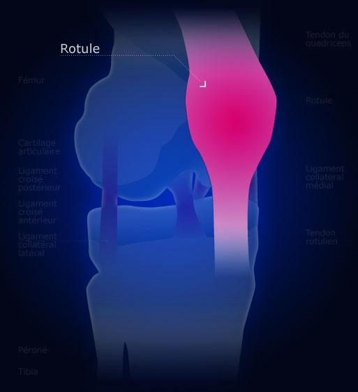 Rotule for Douleur genou interieur